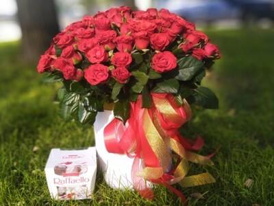 101 крымская роза